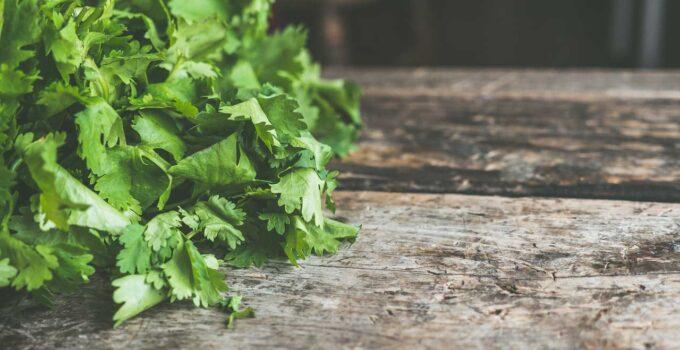 Cómo Entrenarse Para Comer Bien: 10 Consejos Prácticos