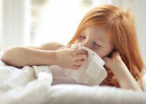 Cómo Tratar La Gripe En Casa
